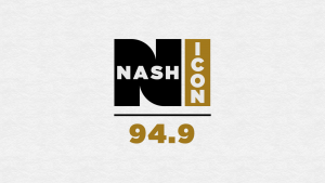 NASH ICON LOGO