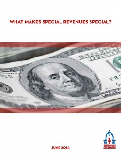 Special-Revenue-Report-Final-Version-06162014_Page_1
